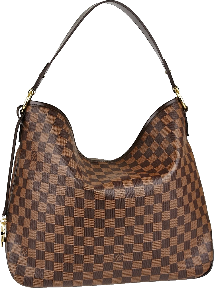 Louis Vuitton Delightful Nm Damier Ebene MM Brown