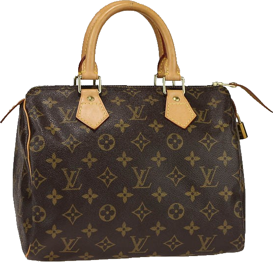 Louis Vuitton Speedy Monogram 25 Brown