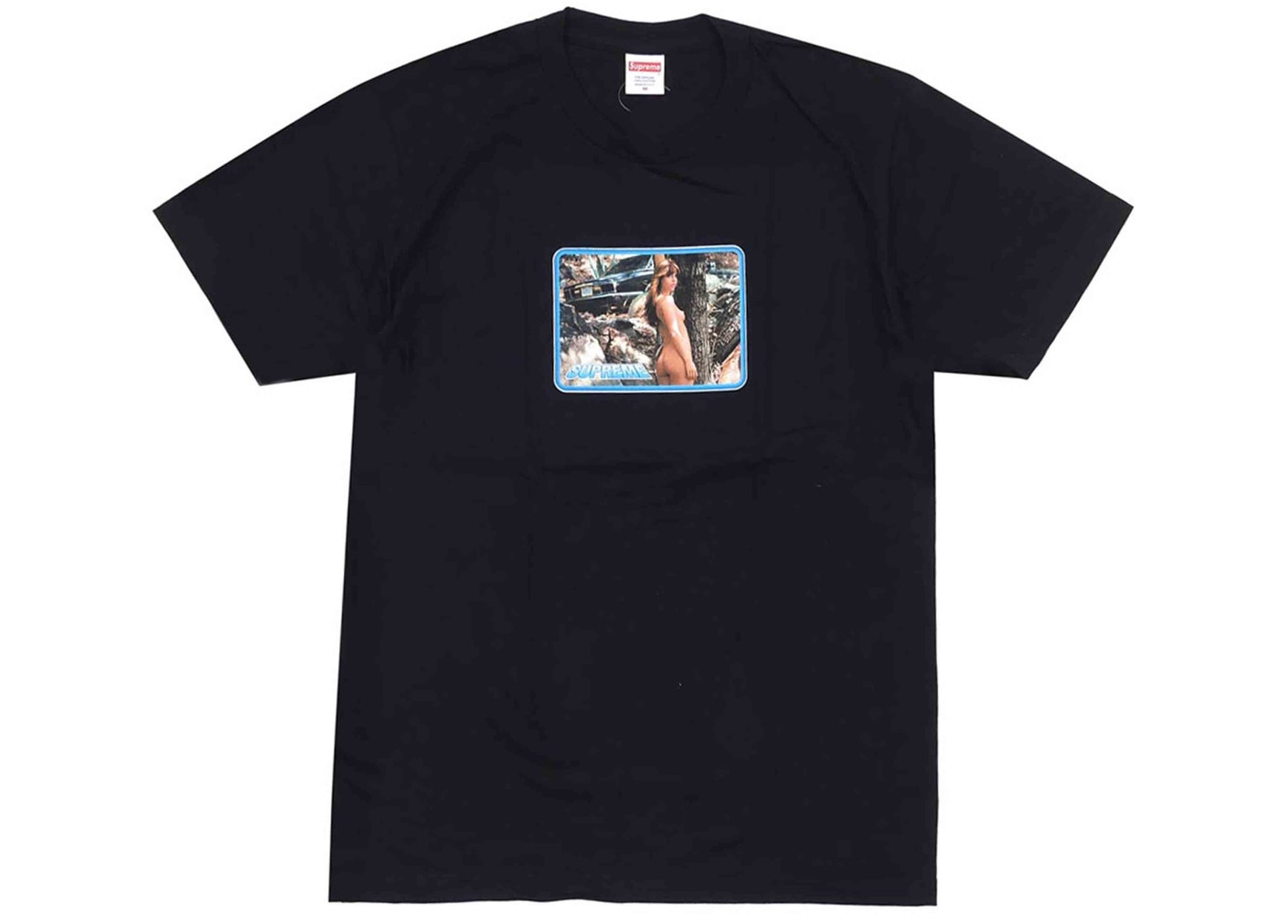 baac2c2e Supreme Larry Clark Girl Tee Black - SS17