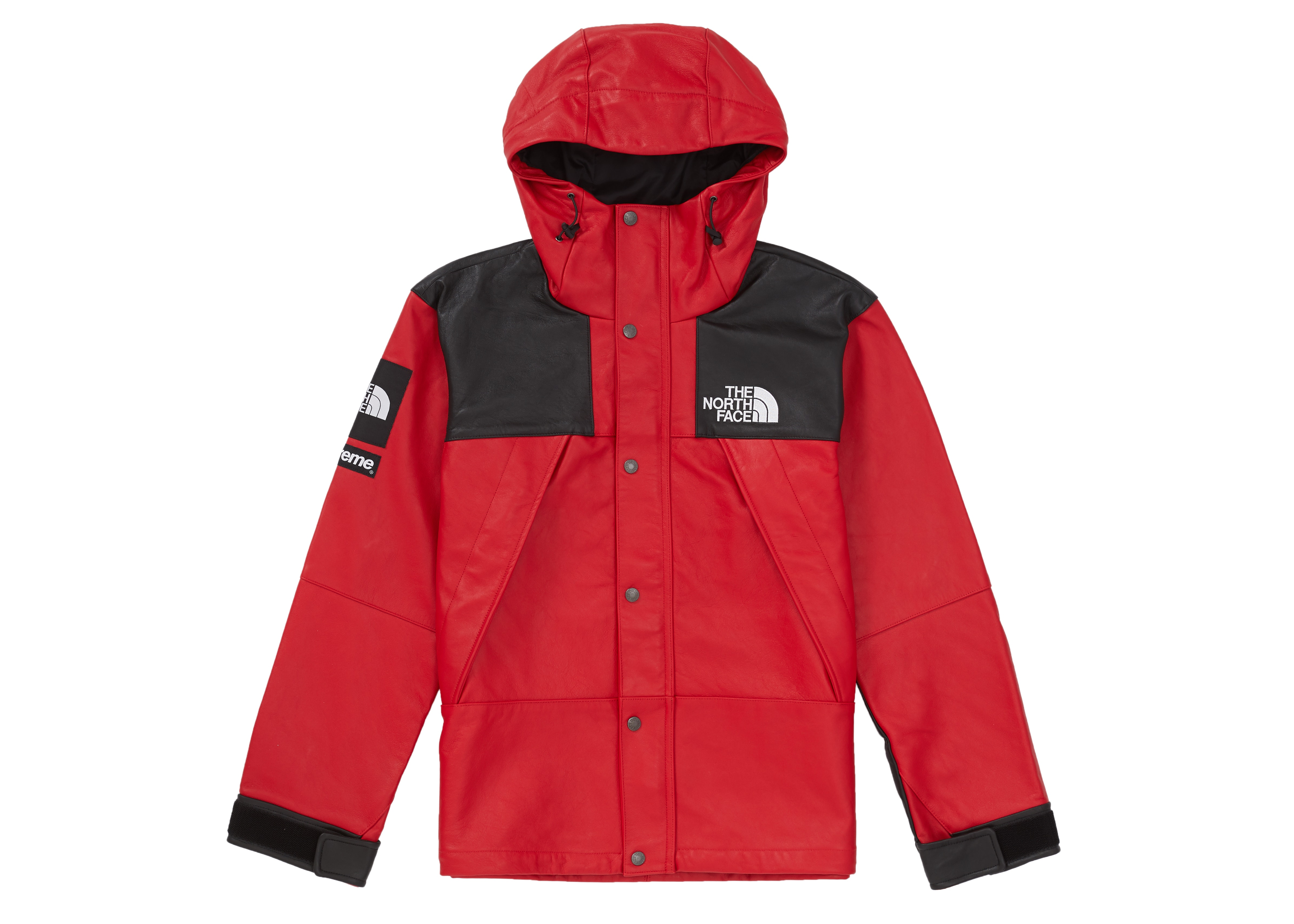 Supreme The North Face Leather Mountain Parka Red Fw18