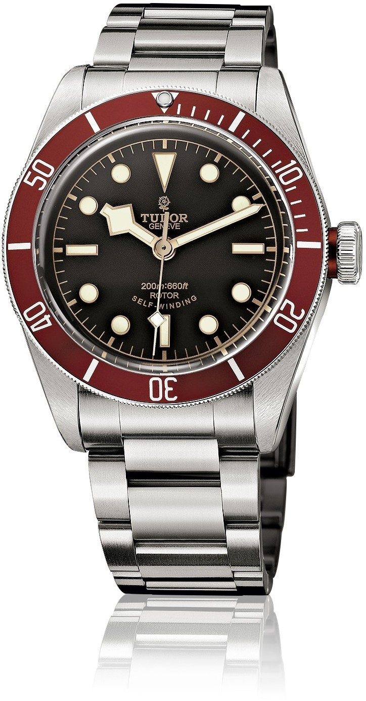 Tudor Black Bay M79220R