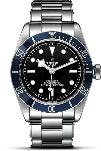 Tudor Black Bay M79230B