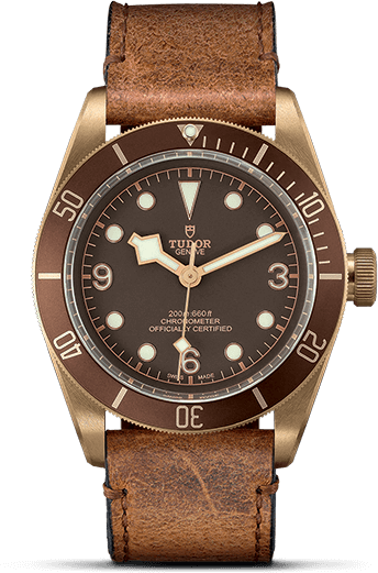 Tudor Black Bay M79250BM