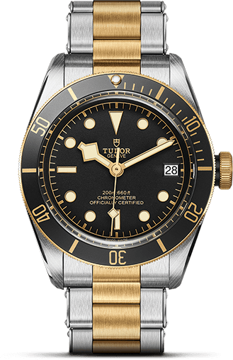 Tudor Black Bay M79733N